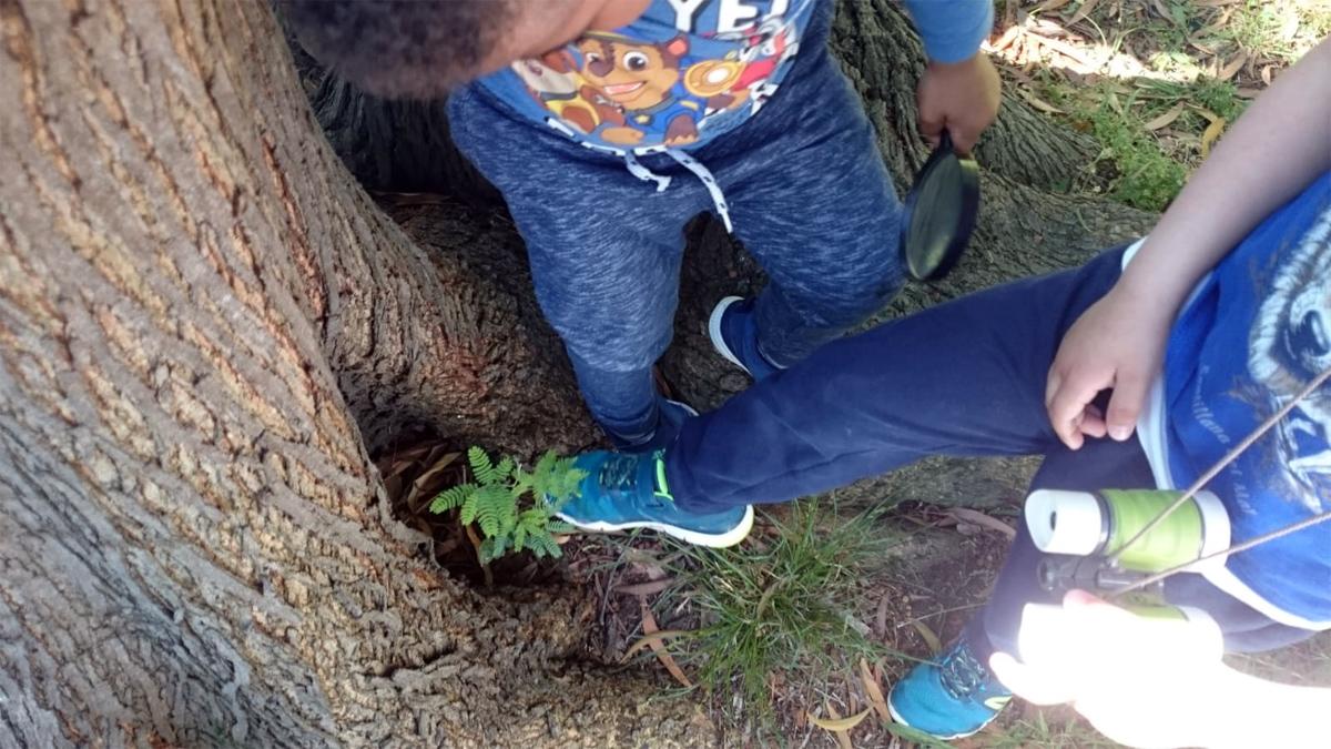 ¿Encontraremos restos de dinosaurios en el parque de La Viesca?